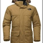 Best North Face Jacket For Cold Weather