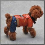 Leather Motorcycle Jacket For Dogs